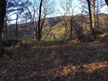 要害山の山頂に立って、昔日を想像してみる
