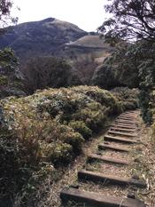 登山道を歩き、奥に見えている達磨山をめざす