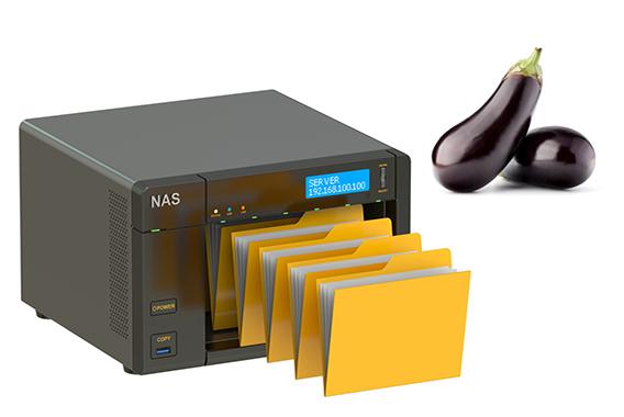 データを失う心配もNASがあればナッスィング?
