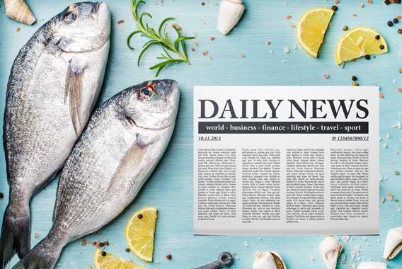 魚の鮮度は「眼」で分かる。新聞は?(上)