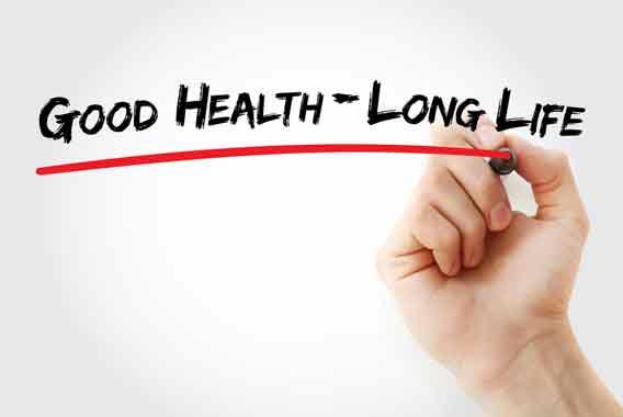 長生きが勝ち組の条件、戦国武将の健康法