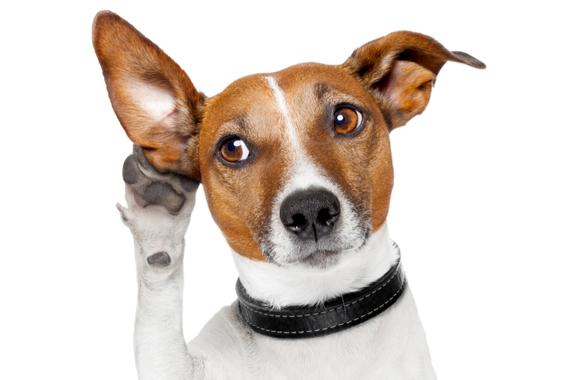 リーダーのための積極的傾聴技法